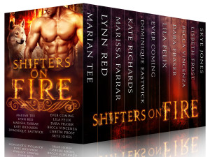Shifters on Fire Box